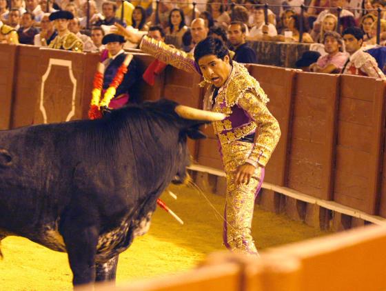Primera novillada de promoción nocturna en Sevilla