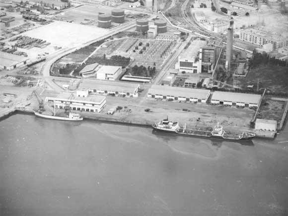 1950. Zona Franca