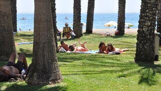 El césped es otra de las opciones para estar cómodo en la playa.   Foto: J.M. Flores