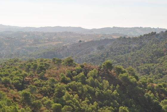Extinguido el incendio de Mijas que ha afectado a unas 700 hectáreas