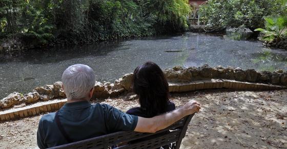 Una pareja contempla el agua del estanque convertido en charca.  Foto: Juan Carlos Vázquez
