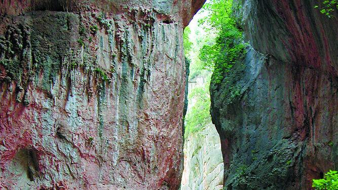 La Garganta Verde, uno de los emblemas del Parque Natural de Los Alcornocales.
