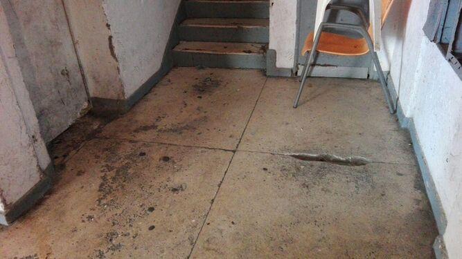 Podemos denuncia el estado de abandono de la barriada de Mirasierra