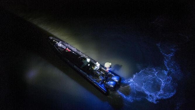 Agentes de la Policía Local y de la Policía Nacional en el Puente Zuazo, ayer por la noche.