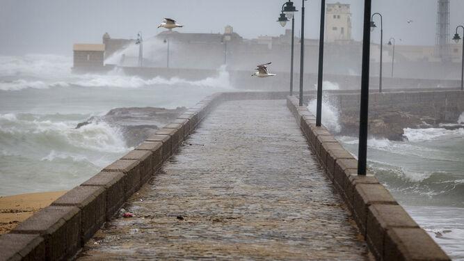 El paseo Fernando Quiñones azotado por el temporal en la mañana de ayer.
