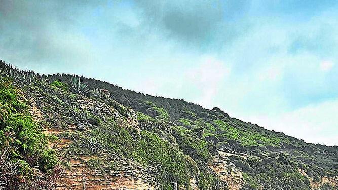 El temporal ha destrozado el acceso a la playa de Las Cortinas, en los Caños de Meca.